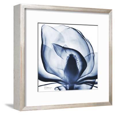 Magnolia Indigo-Albert Koetsier-Framed Art Print