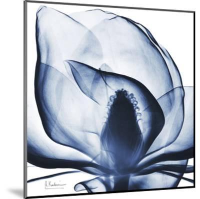 Magnolia Indigo-Albert Koetsier-Mounted Art Print