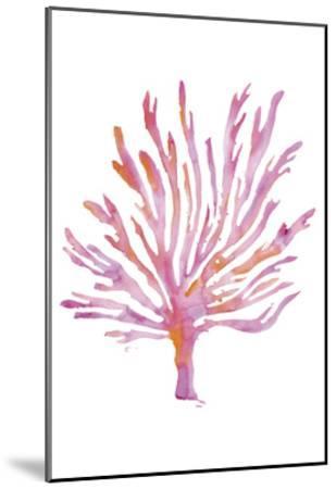 Flaming Tree-Pam Varacek-Mounted Art Print
