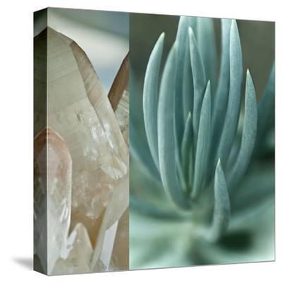 Desert Jewels I-Sidney Aver-Stretched Canvas Print