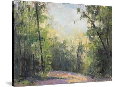 Path-Elissa Gore-Stretched Canvas Print