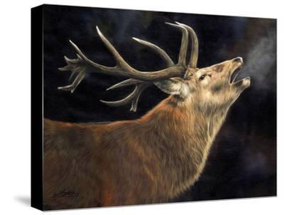 Winter Stag-David Stribbling-Stretched Canvas Print