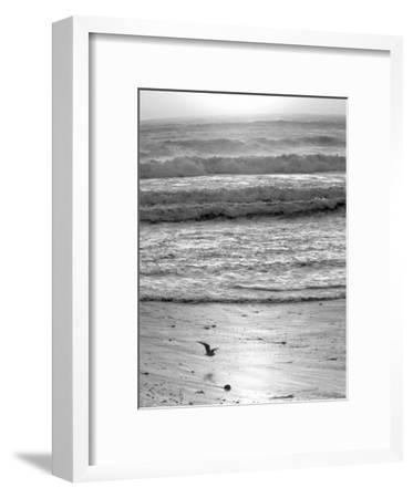 Pacific Ocean Seascape #22-Murray Bolesta-Framed Art Print