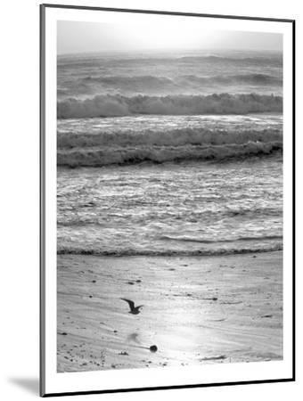 Pacific Ocean Seascape #22-Murray Bolesta-Mounted Art Print