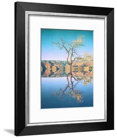 Canyon-Mina Teslaru-Framed Art Print