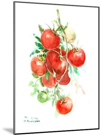 Vine Tomatoes-Suren Nersisyan-Mounted Art Print