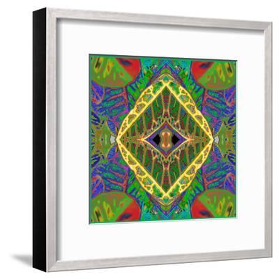 Croton Shield 2a-Rose Anne Colavito-Framed Art Print