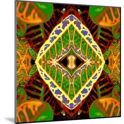 Croton Dashiki-Rose Anne Colavito-Mounted Art Print