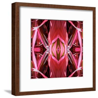 Red Blanket X3-Rose Anne Colavito-Framed Art Print