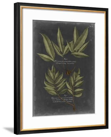 Foliage Dramatique IV-Vision Studio-Framed Giclee Print
