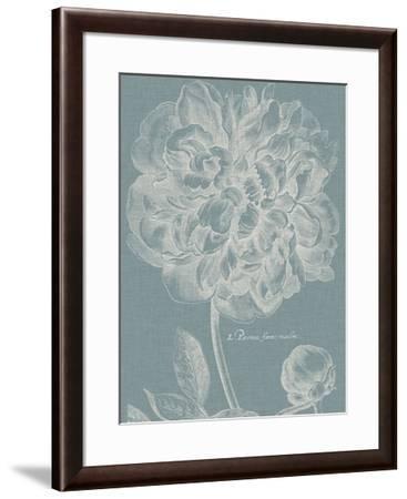 Graceful Peony I-Vision Studio-Framed Giclee Print