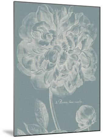 Graceful Peony I-Vision Studio-Mounted Giclee Print