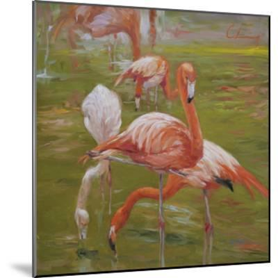 Flamingo I-Chuck Larivey-Mounted Giclee Print