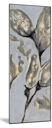 Flower Bud Triptych I-Jennifer Goldberger-Mounted Giclee Print
