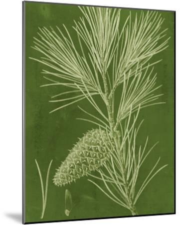 Modern Pine V-Vision Studio-Mounted Giclee Print