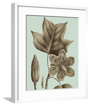 Flowering Trees I-Vision Studio-Framed Giclee Print