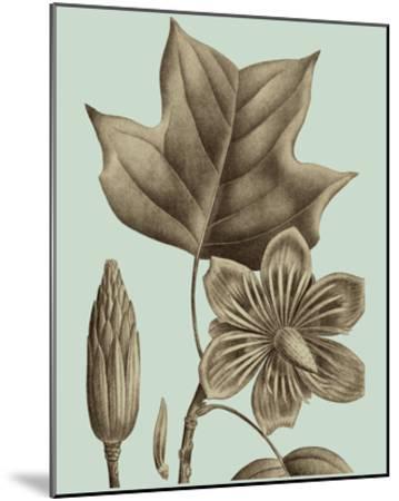 Flowering Trees I-Vision Studio-Mounted Giclee Print