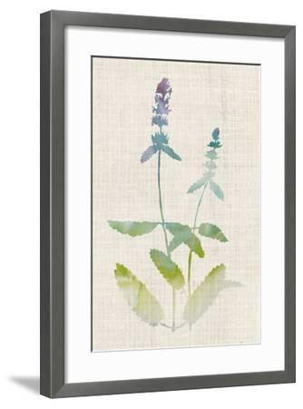 Watercolor Plants IV-Naomi McCavitt-Framed Giclee Print
