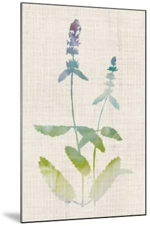 Watercolor Plants IV-Naomi McCavitt-Mounted Giclee Print