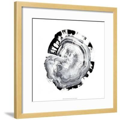 Tree Ring Abstract III-Ethan Harper-Framed Giclee Print