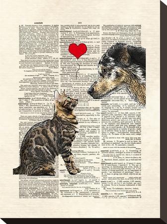 Dog Cat Love-Matt Dinniman-Stretched Canvas Print