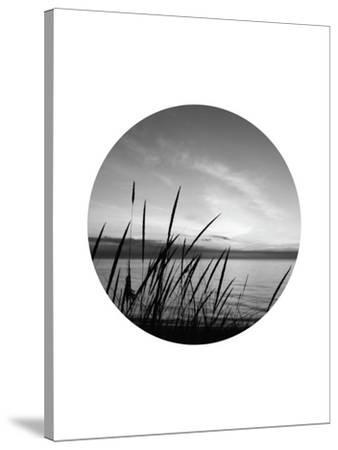 Dune Grass Circle-Jetty Printables-Stretched Canvas Print