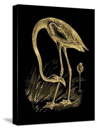 Flamingo 1 Golden Black-Amy Brinkman-Stretched Canvas Print