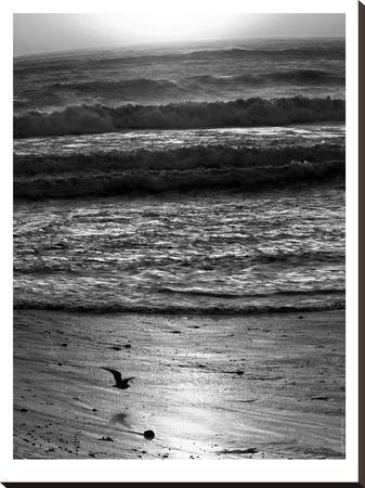 Pacific Ocean Seascape #22-Murray Bolesta-Stretched Canvas Print