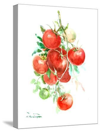 Vine Tomatoes-Suren Nersisyan-Stretched Canvas Print