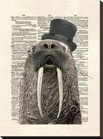 Walrus-Matt Dinniman-Stretched Canvas Print