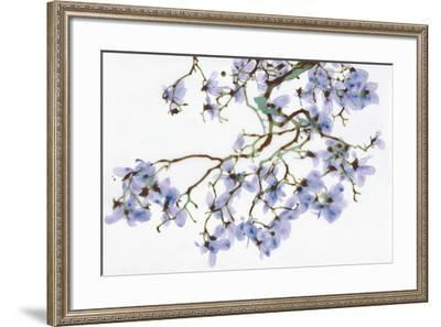 Pale Azure-Jackie Battenfield-Framed Giclee Print