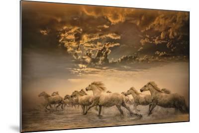 Flying Manes-Bobbie Goodrich-Mounted Giclee Print
