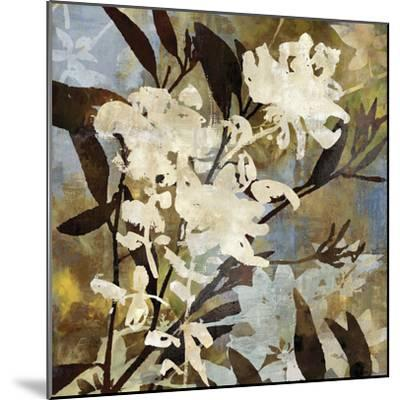 Floral Eclipse I-Paul Duncan-Mounted Giclee Print
