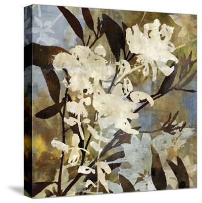 Floral Eclipse I-Paul Duncan-Stretched Canvas Print