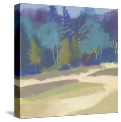 Coastal Dunes II-Cathe Hendrick-Stretched Canvas Print
