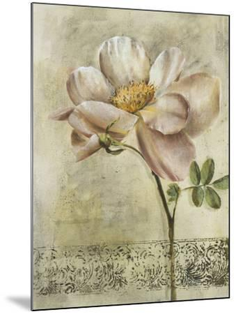 Floral Blush IV-Carney-Mounted Giclee Print