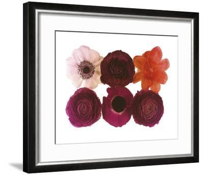 Colour Cluster I-Katja Marzahn-Framed Giclee Print