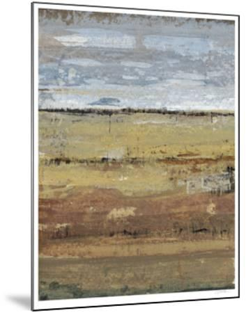 Field Layers I-Tim OToole-Mounted Limited Edition