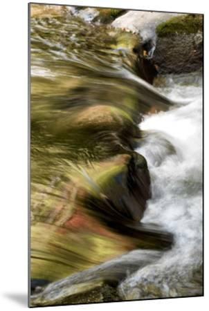 Water Abstract I-Danny Head-Mounted Giclee Print