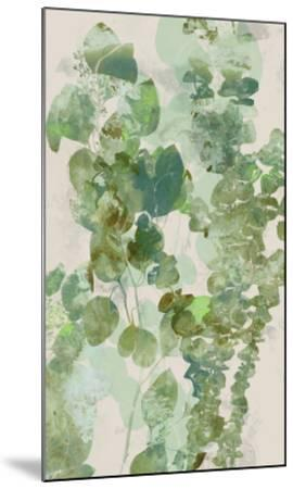 Watercolor Eucalyptus II-Jennifer Goldberger-Mounted Art Print