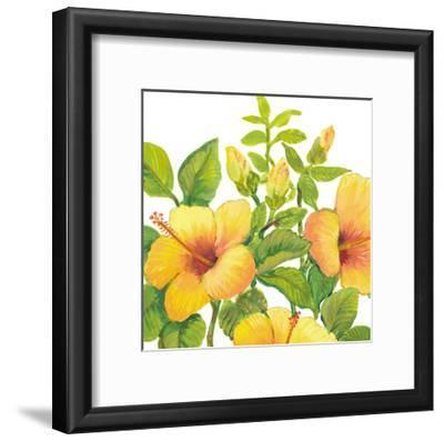 Watercolor Hibiscus I-Tim OToole-Framed Art Print