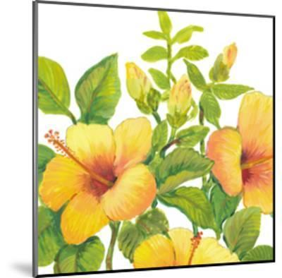 Watercolor Hibiscus I-Tim OToole-Mounted Art Print