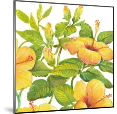 Watercolor Hibiscus II-Tim OToole-Mounted Art Print