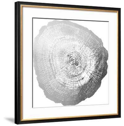 Silver Foil Tree Ring IV-Vision Studio-Framed Art Print