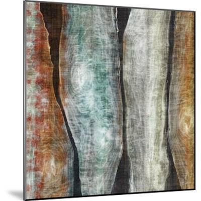 Painted Live Edge II-John Butler-Mounted Art Print