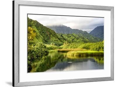 Coastal Marsh I-Danny Head-Framed Giclee Print