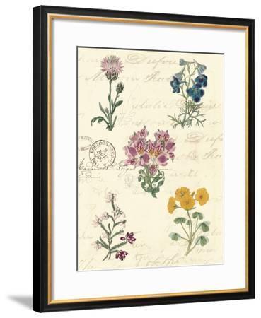 Botanical Journal I-Vision Studio-Framed Giclee Print
