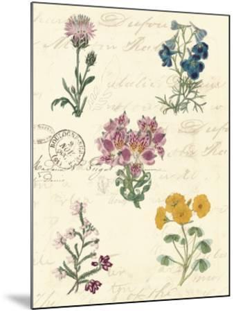 Botanical Journal I-Vision Studio-Mounted Giclee Print