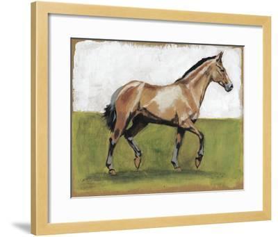 Equestrian Studies III-Naomi McCavitt-Framed Giclee Print