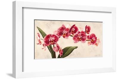 Purple Queens-Luca Villa-Framed Art Print
